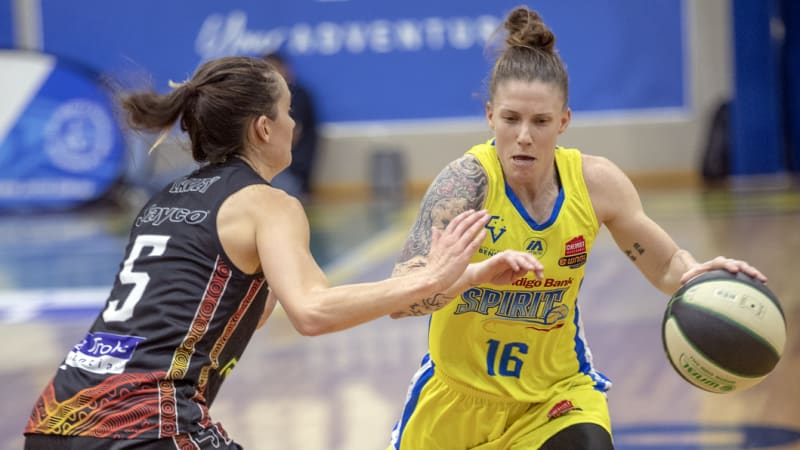 WNBL title race impossible to call: Timms