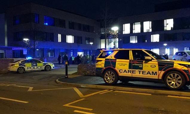 Three teenagers 'stabbed in fight' outside school in Birmingham