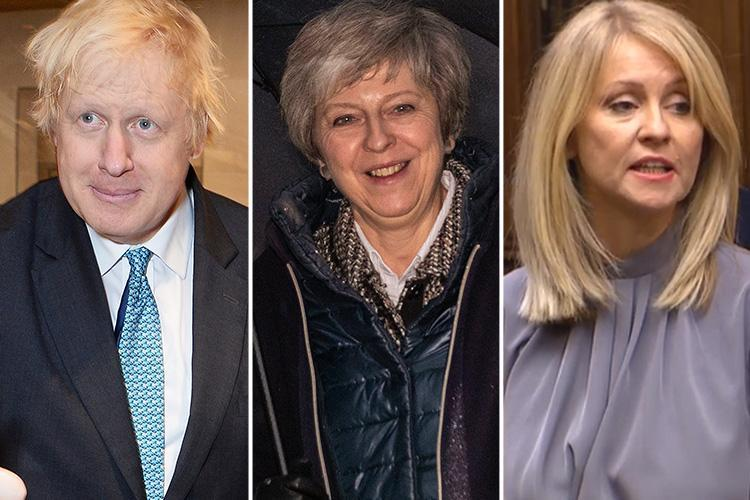 Boris Johnson and Esther McVey throw their hats into ring to replace Theresa May if she's ousted THIS WEEK