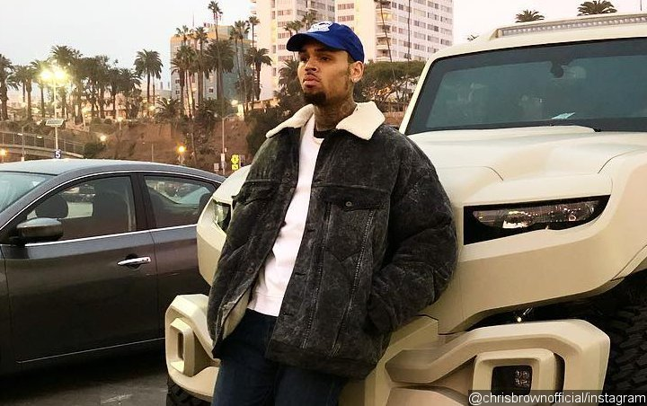 Chris Brown to Counter Rape Accuser's Claim With Defamation Lawsuit