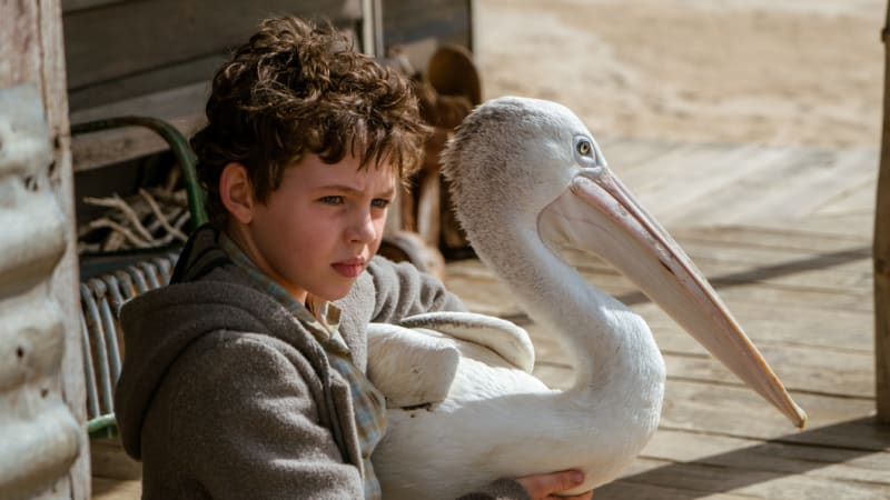 'Storm Boy': will Geoffrey Rush factor rain on family film's parade?