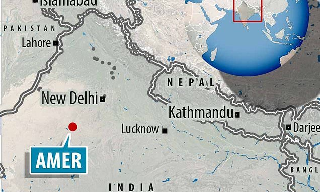 Girl, seven, is raped and strangled in Indian province