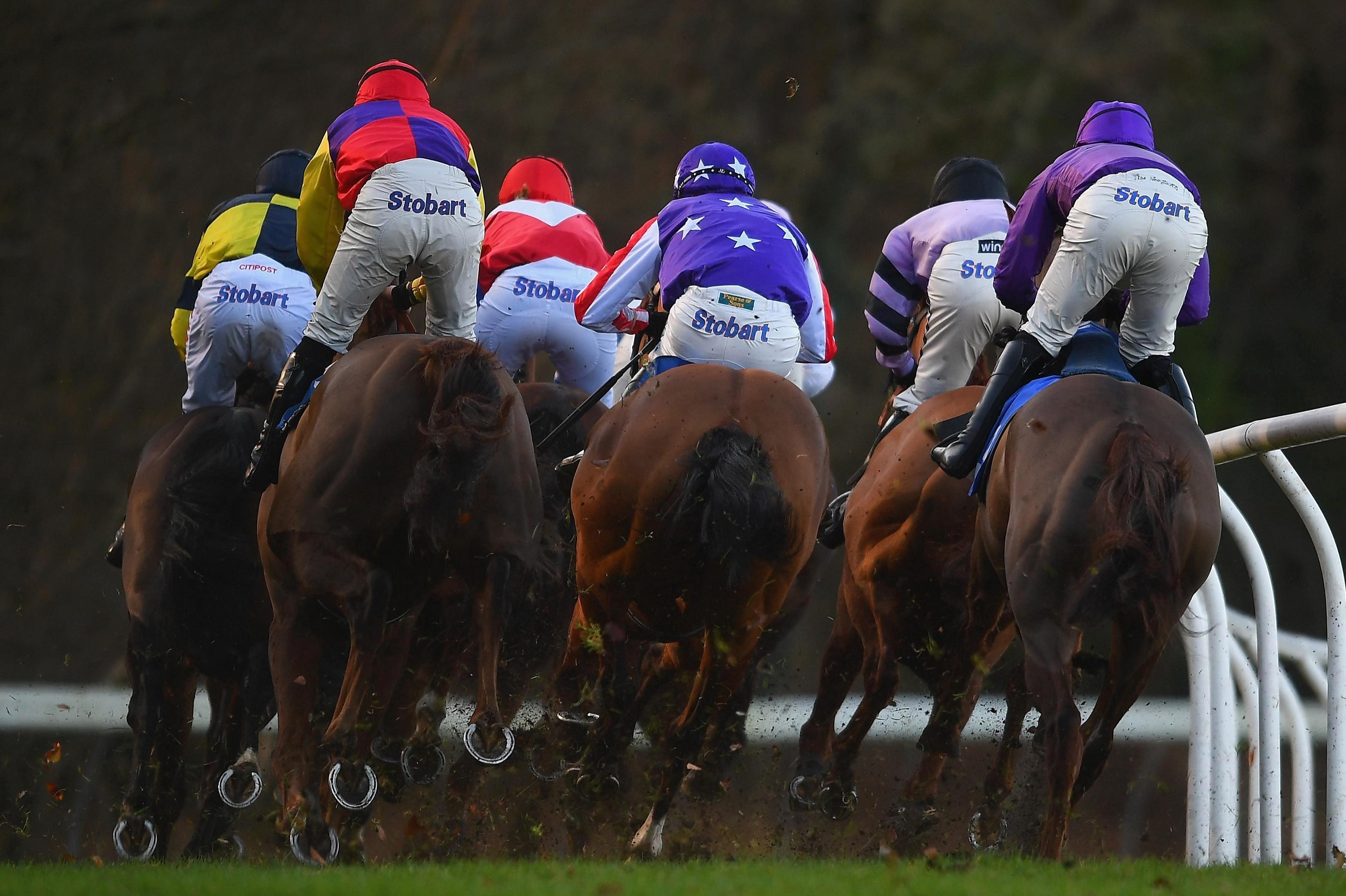 Templegate's racing tips: Ayr and Exeter – Templegate's betting preview for racing on Sunday, January 20