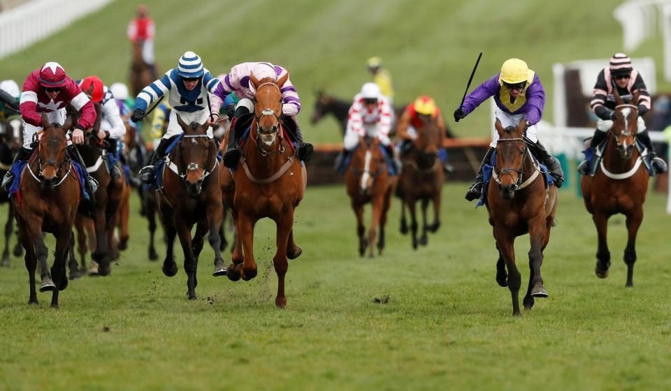 Templegate's horse racing tips: Cheltenham and Doncaster