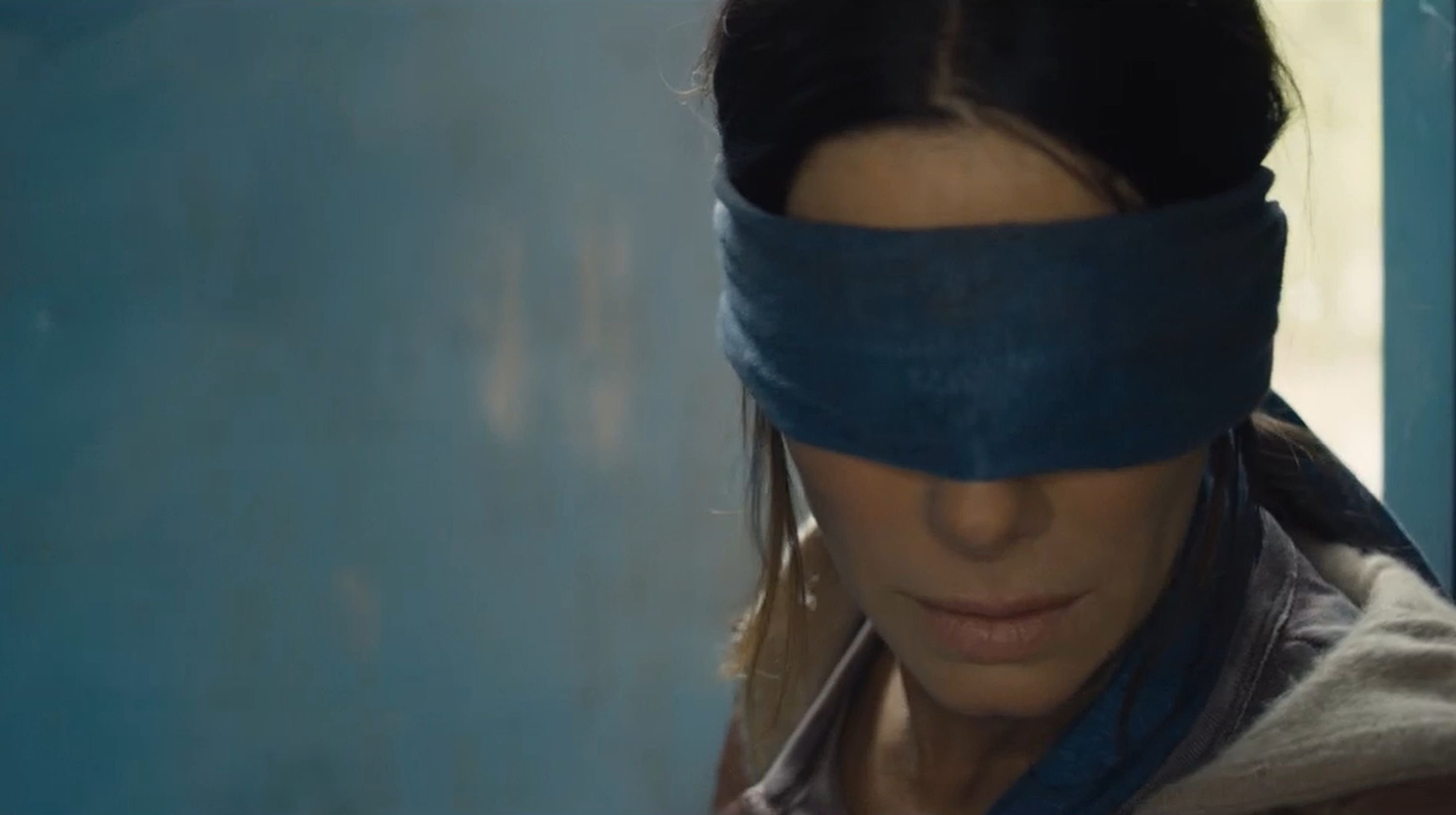 We need a 'Bird Box' sequel to answer our many, many burning questions
