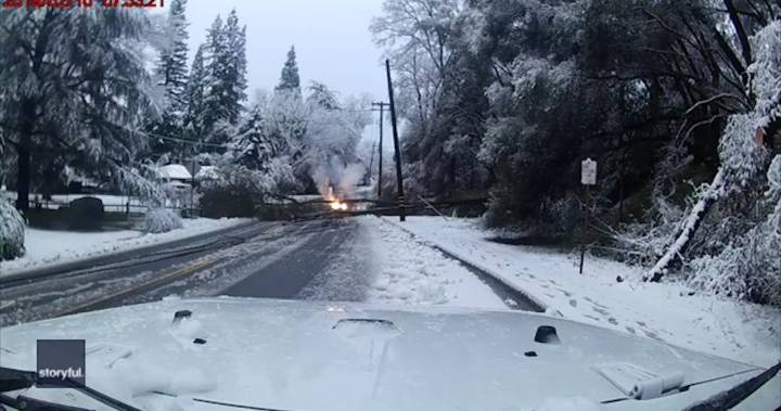 Power lines nearly hit car in California after heavy snow brings down tree