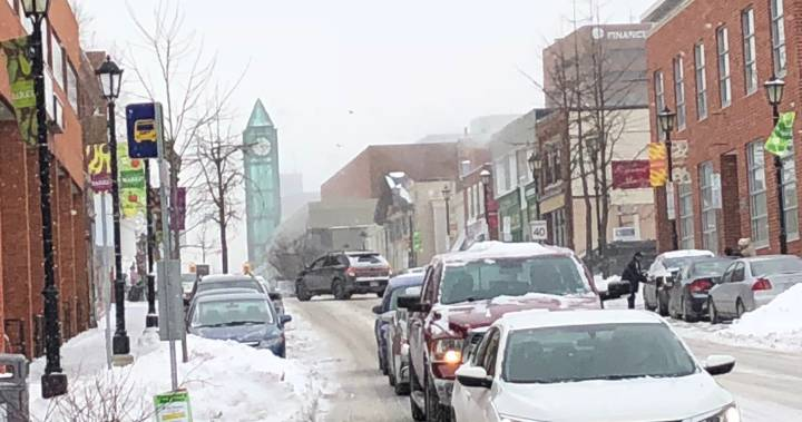 Kitchener man arrested over seniors' snow removal scam