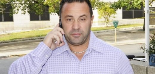 Joe Giudice's Mother Says She Suffers From Multiple Diseases Amid His Looming Deportation