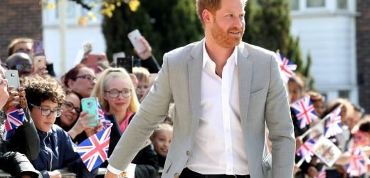 Expectant dad Prince Harry beams as he's greeted by dozens of well-wishers