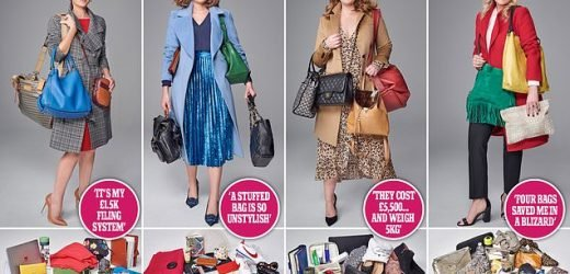 Why carry one handbag when you need THREE?