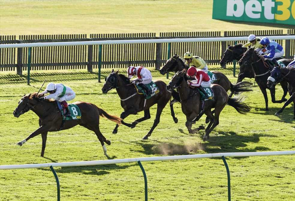 John Gosden's Wissahickon the headline act on All-Weather Championship Finals Day