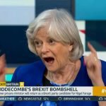 Ann Widdecombe vows to send 'seismic shock' through politicians by winning seat for Brexit Party
