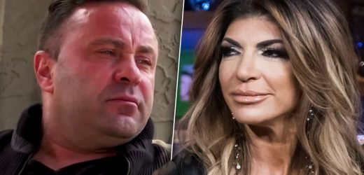 Teresa Giudice Waits To File Divorce From Joe Giudice After Deportation