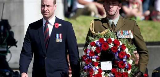 Prince William Honors New Zealand's Fallen Soldiers and Terrorism Victims in Emotional Ceremony