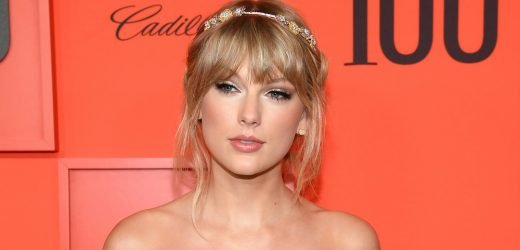 Taylor Swift Confirms Fans' Theories & Introduces Her New Cat!