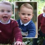 Prince Louis birthday: Where to buy outfits prince wore in photos taken by Kate Middleton