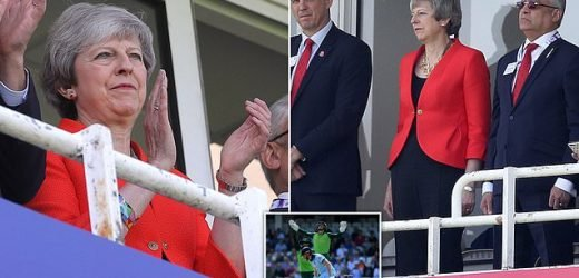 Overs and out! Theresa May watches England in the Cricket World Cup