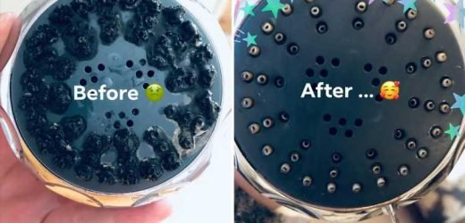 Mum transforms her 'shameful' limescale-ridden shower head with £1 disinfectant