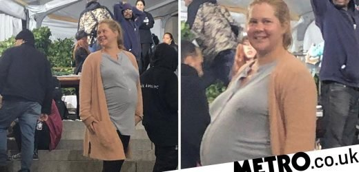 Met Gala 2019: Amy Schumer walks red carpet moments before giving birth