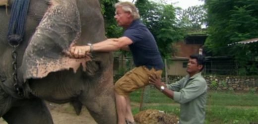 Martin Clunes ditched ascharitypatron foranimal crueltyon ITV show