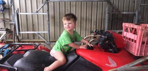 Missing boy, 2, feared eaten by crocodiles is found dead in a dam on his family's farm
