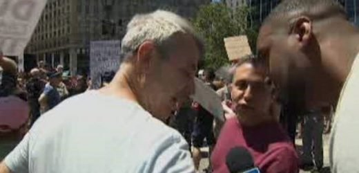 Fox News contributor Lawrence Jones faces racist taunts from protesters at 'Impeach Trump' rally