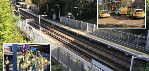 Children ran crying and screaming after 'bullied' schoolboy, 14, lay on tracks and was hit by train in front of them