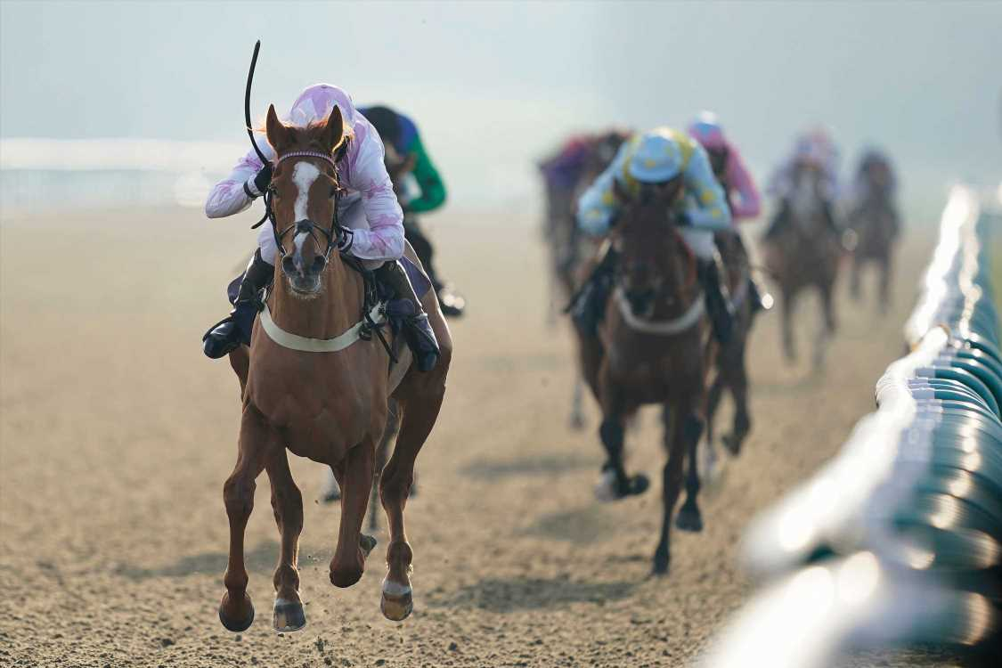 Market movers – Today's racing odds for Lingfield and Nottingham