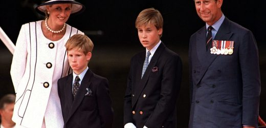 Was Prince William's Mind 'Poisoned' After Prince Charles and Princess Diana's Divorce?