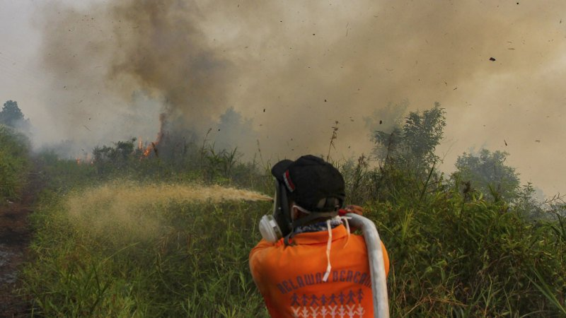 Indonesian fires force schools to shuts as smog spreads across borders