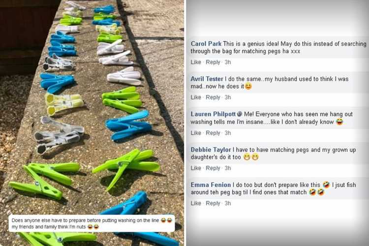 Cleaning fans are obsessed with photo of clothes pegs arranged in same-colour pairs