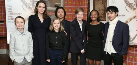 Is Angelina Jolie Planning On Adopting Baby No 7 Now That Maddox Has Left For College?