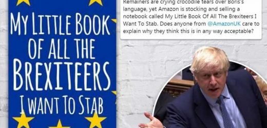 Fury as Amazon sells My Little Book Of All the Brexiteers I Want To STAB notebook after row over violent Brexit language – The Sun