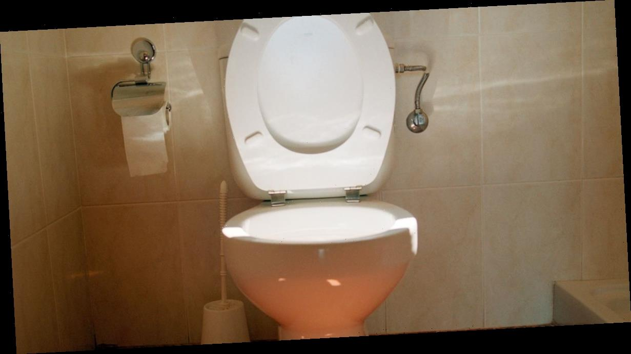 Mum told to 'chill out' after starting strange toilet seat etiquette debate