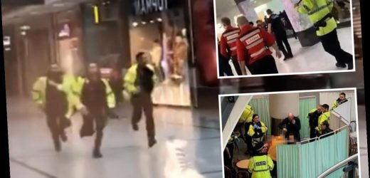 Hero cops hailed for rushing to tackle knifeman who stabbed three shoppers in rampage at Manchester Arndale