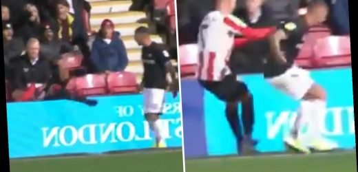 Watch incredible bust-up as Bristol City ace Jack Hunt nudges Brentford's Sergi Canos over advertising hoardings in heated row – The Sun