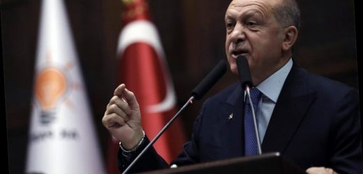 Turkey's Erdogan says he will meet Pence and Pompeo about Syria following apparent snub