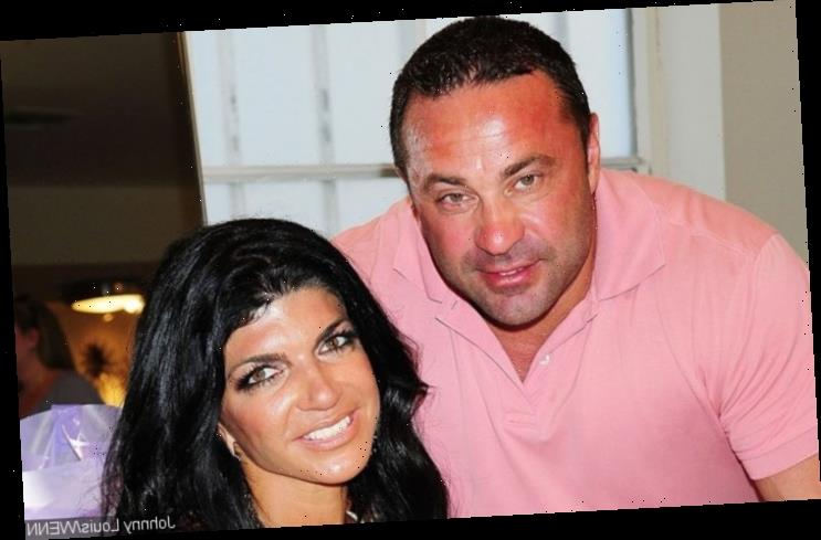 Joe Giudice's 'Bitter' Family Bans Teresa From Meeting Him in Italy